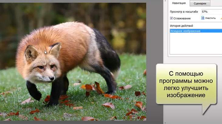 Домашний графический редактор